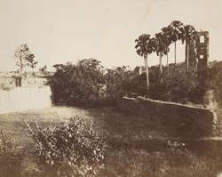 Old Fort of Bassein. Distant view of the Cathedral of St James
